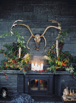Antlers hanging over luxurious fireplace - FOLF00503