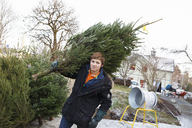 Young man working in christmas tree lot - FOLF01100