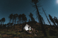 Hiker standing by illuminated rocks amidst trees on field against sky at night - CAVF28740