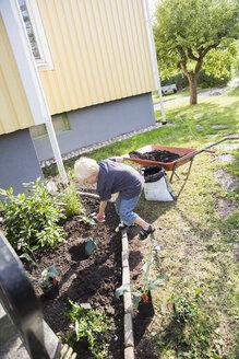 Boy working in garden - FOLF01296