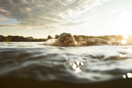 Female swimmer swimming in lake against sky during sunset - CAVF29149