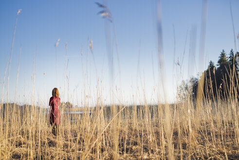 Young woman standing in field in sunlight - FOLF01641