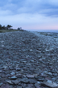 Beach at dusk - FOLF02006