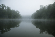 Symmetry view of trees by lake against sky during foggy weather - CAVF29729