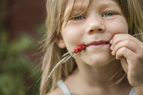 Portrait of girl with wild strawberries on spikelet in mouth - FOLF02226