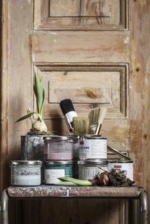 Paint cans and onion bulb on table - FOLF02247