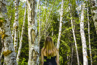 Rear view of female hiker exploring in forest - CAVF30393