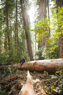 Female hiker exploring forest while sitting on tree trunk at Redwood National and State Parks - CAVF30779