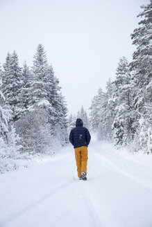 Man walking along road in forest in winter - FOLF03600