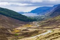 United Kingdom, Scotland, Highland, Glen Docherty Valley, A832 road, Loch Maree - WDF04492