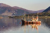 United Kingdom, Scotland, Highland, Ullapool, Loch Broom, fishing boat - WDF04501