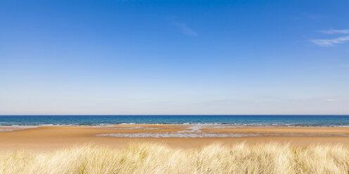 United Kingdom, Scotland, East Coast, Brora, North Sea, beach - WDF04507