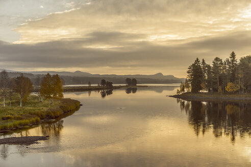Fulufjellet National Park - FOLF03805