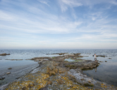 Rock formations on coastline - FOLF04066