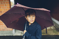 Portrait of boy holding umbrella - FOLF04282