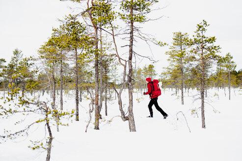 Man hiking in Kindla nature reserve - FOLF04321