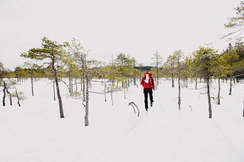 Man skiing in Kindla nature reserve - FOLF04324