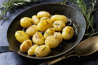 Fried potatoes with rosmary in pan - CSF29013