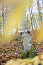 Arms of girl hugging tree - FOLF05164