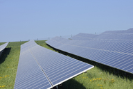 Germany, Bavaria, Solar panels at solar plant field - RUEF01838
