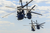 Helicopter military exercise - FOLF05518