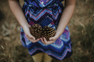 Midsection of girl wearing blue dress holding pine cones - CAVF31858