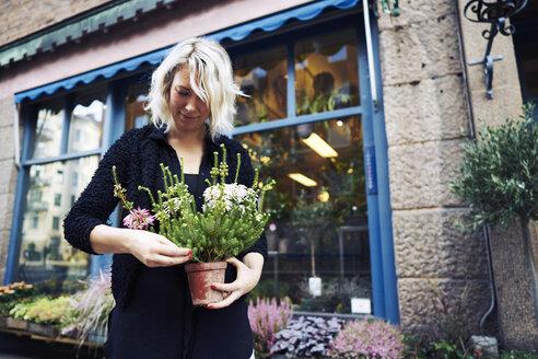 Florists holding potted plant - FOLF06120