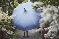Woman with umbrella walking in garden - FOLF06186