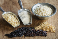 Various sorts of rice and rice products - EVGF03339