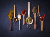 Variety of spices on wooden spoons - KSWF01895