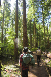 Rear view of friends with backpack walking on boardwalk amidst forest - CAVF32315
