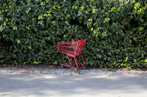 Shopping cart against plants on footpath - CAVF32322