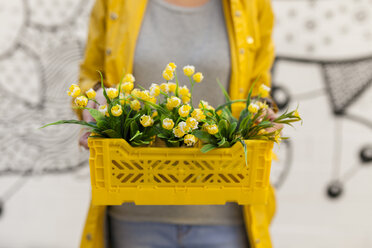 Close-up of woman holding yellow spring flower box - VABF01536