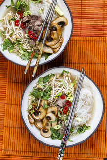Vietnamese rice noodle soup with mushrooms and beef - SBDF03521