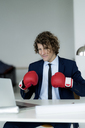 Businessman looking at laptop, wearing boxing gloves - HHLMF00206