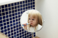 Reflection of little girl brushing teeth - FOLF09033