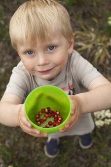 Portrait of boy with wild strawberries - FOLF09293