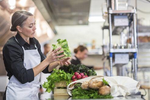 Female chef preparing food in restaurant kitchen - CAVF34686