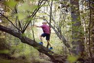 Boy climbing tree in forest - CAVF35070