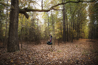 Boy swinging on tire swing in forest - CAVF35088