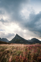 Norway, Lofoten Isands, Fredvang - WVF01010