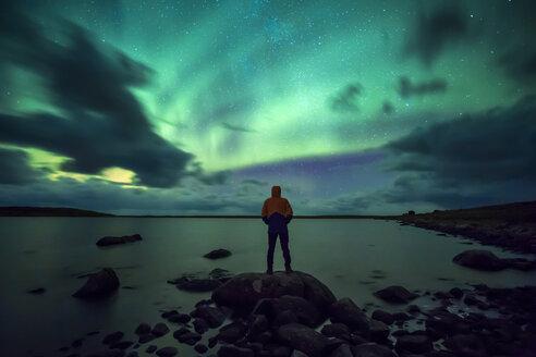 Norway, Lofoten Islands, Eggum, young man admiring northern lights - WVF01035