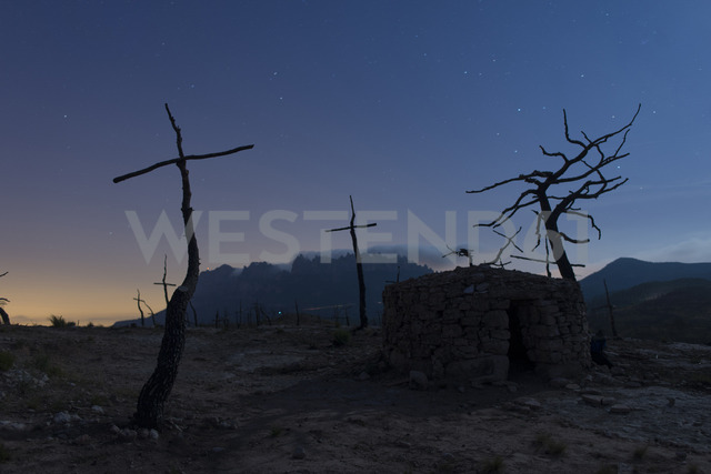 Spain, Manresa, burned forest with symbols of crosses in the morning - SKC00403