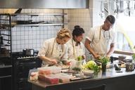 Multi-ethnic chefs preparing food on kitchen counter at restaurant - MASF00896