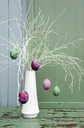 Sprayed twigs with dyed Easter eggs - GISF00312