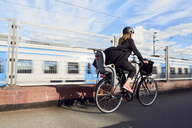Rear view of mature woman cycling on road by fence against sky - MASF01306