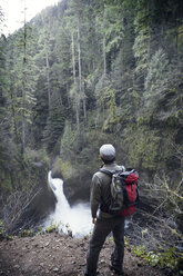 View of man looking at waterfall in forest - CAVF35368