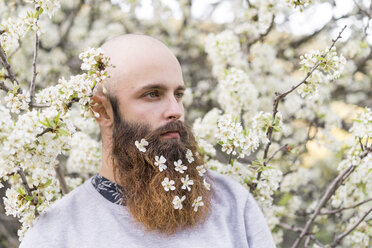 Portrait of hipster with white tree blossoms in his beard - AFVF00419
