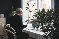 Plant by female engineer working at desk in home office - MASF01503