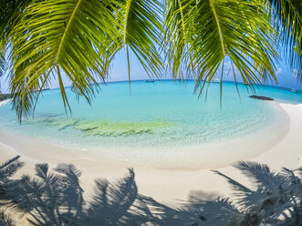 Maledives, Ross Atoll, beach - AMF05681
